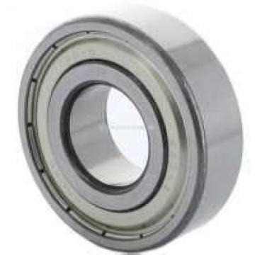 45 mm x 75 mm x 40 mm  ZEN NNF5009PP Rodamientos De Rodillos